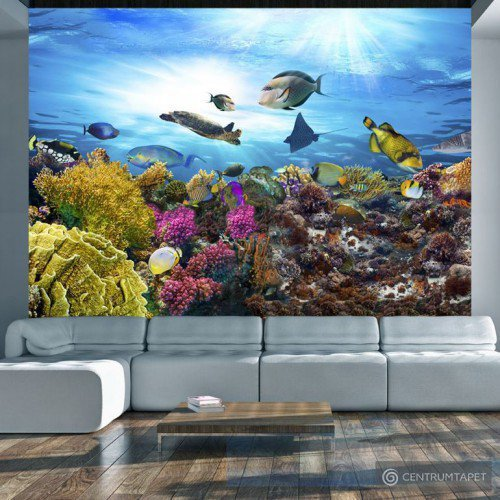 Fototapeta Rafa koralowa g-A-0093-a-a