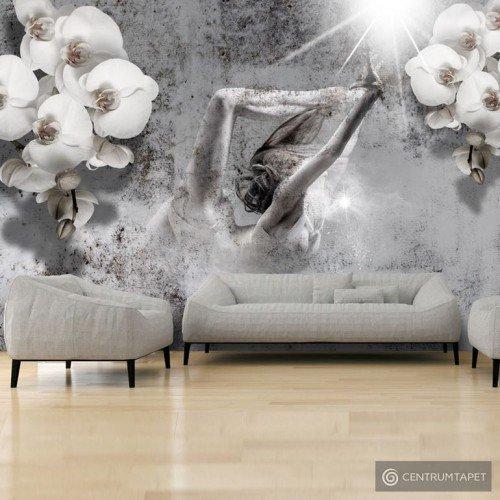Fototapeta Układ z orchideą h-A-0031-a-a
