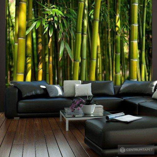 Fototapeta Azjatycki las bambusowy 100403-10
