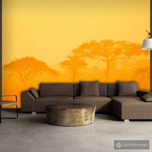 Fototapeta Orange savanna 100403-12