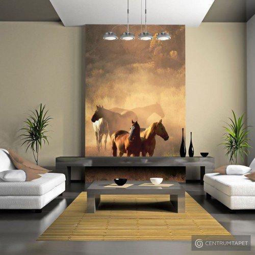 Fototapeta Dzikie konie na stepie 100403-130