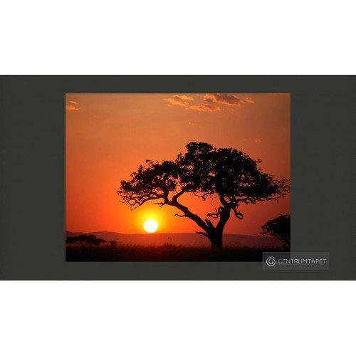 Fototapeta Afryka: zachód...