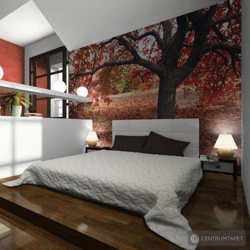 Fototapeta Jesienne drzewo 100403-149