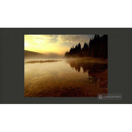 Fototapeta Las i jezioro...