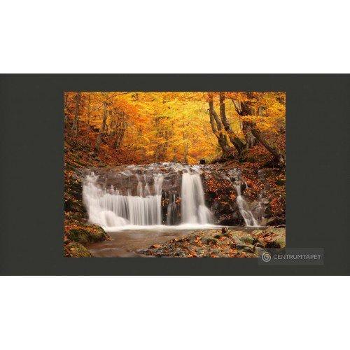 Fototapeta Autumn landscape...