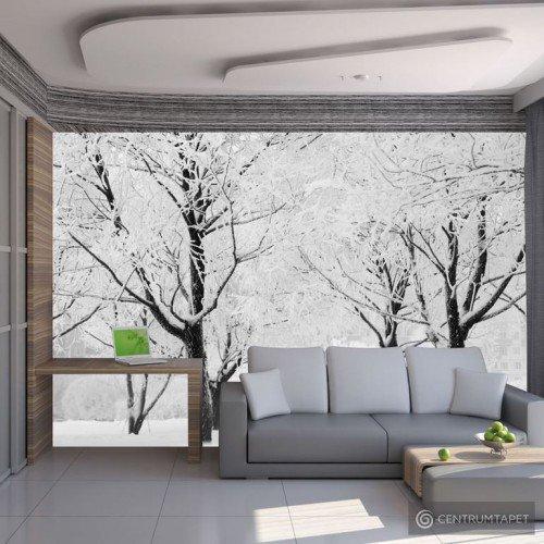 Fototapeta Drzewa - pejzaż zimowy 100403-164