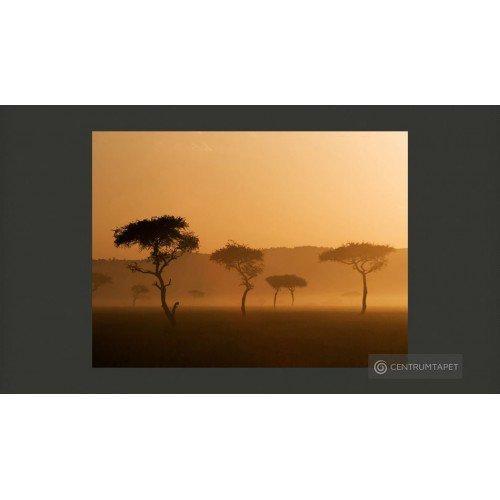 Fototapeta Massai Mara...