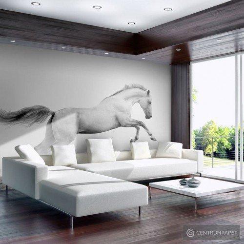 Fototapeta White gallop 100403-177