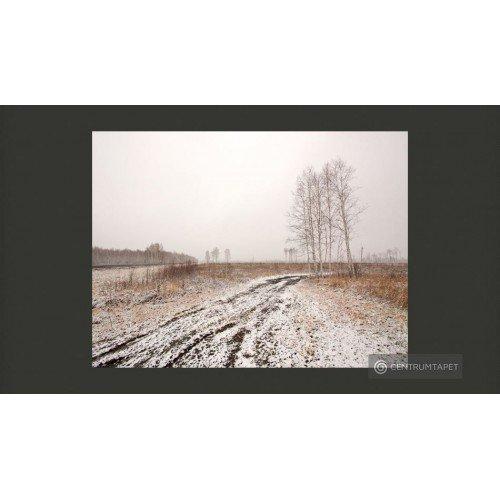 Fototapeta Winter field...