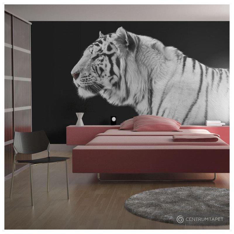 Fototapeta Biały tygrys 100403-20
