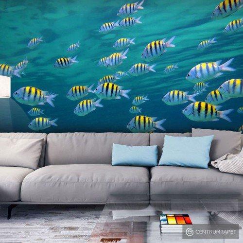 Fototapeta Pejzaż podwodny - Karaiby 100403-57