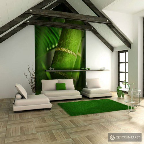 Fototapeta Bambus - detal 100403-92