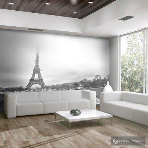 Fototapeta Paryż: Wieża Eiffla 100404-101