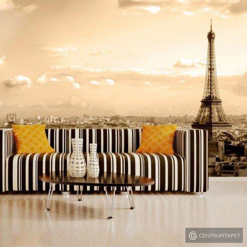 Fototapeta Paryż - panorama 100404-110