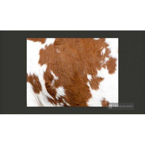 Fototapeta Skóra krowy...