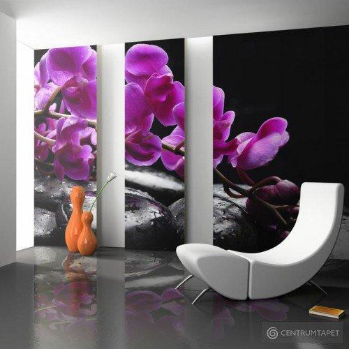 Fototapeta Chwila relaksu: orchidea i kamienie zen 100406-24