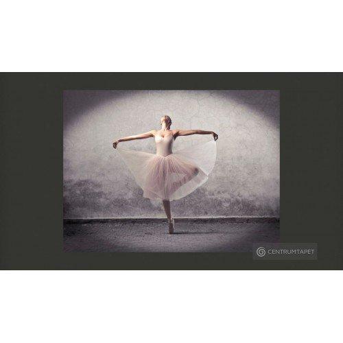Fototapeta Balet - poezja...