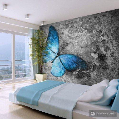 Fototapeta Blue butterfly 10040903-73