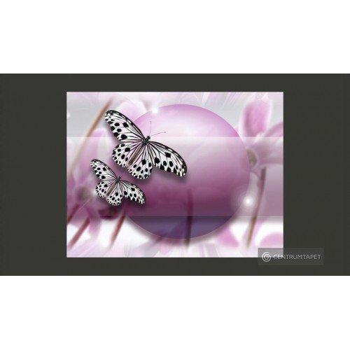Butterfly! 10040903-81