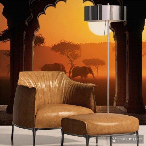 Fototapeta Usłyszeć Afrykę 10040904-82