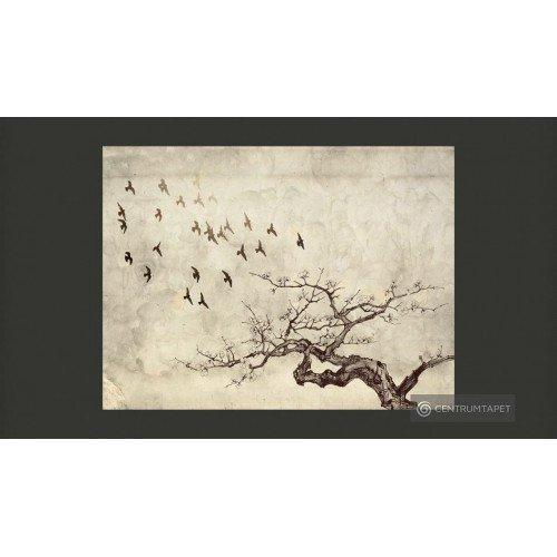 Fototapeta Flock of birds...