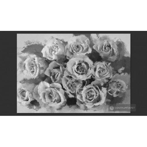 Fototapeta A dozen roses...