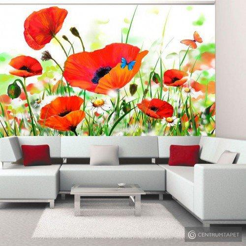 Fototapeta Country poppies 10040906-58
