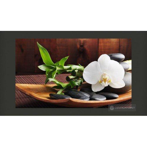 Fototapeta Świątynia Zen...