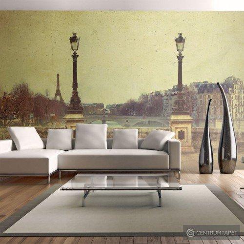 Fototapeta Adieu Paris! 10060904-49