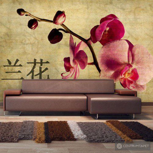 Fototapeta Japanese orchid 10060906-9