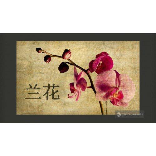Fototapeta Japanese orchid...