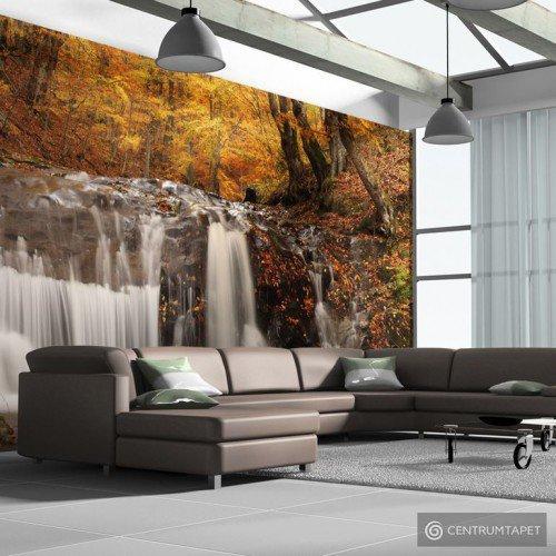 Fototapeta Autumn landscape: waterfall in forest 100703-5
