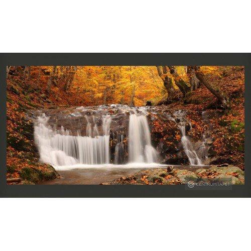 Fototapeta Autumn...