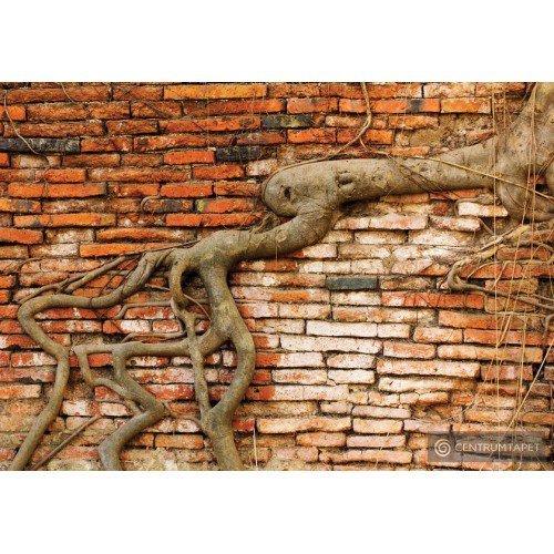 Fototapeta 10333 Ściana z cegły