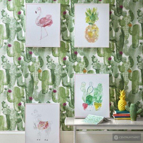 Obraz 105875 Kaktus...