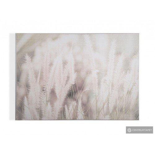 Obraz 104566 Kwiaty Graham&Brown