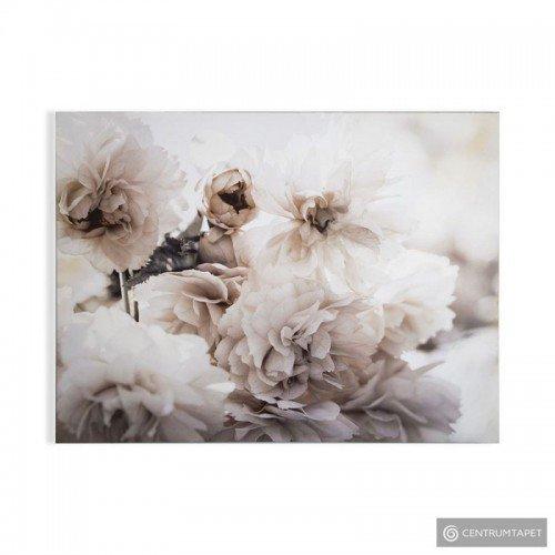 Obraz 104573 Kwiaty...