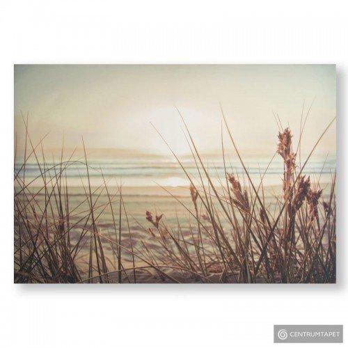 Obraz 105889 Piaszczysta plaża - zachód słońca Graham&Brown