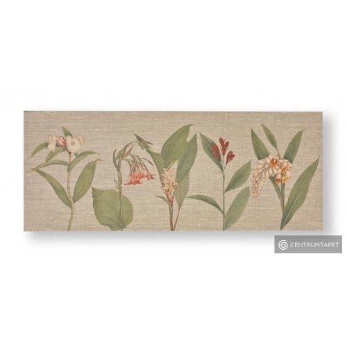 Obraz 104012 Kwiaty Graham&Brown
