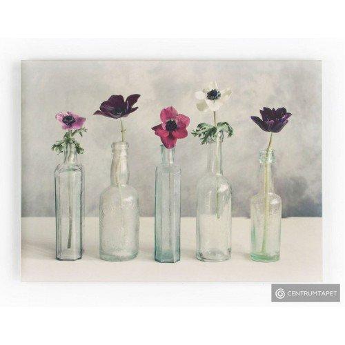 Obraz 40-619 Kwiaty w szklanych wazonach Graham&Brown