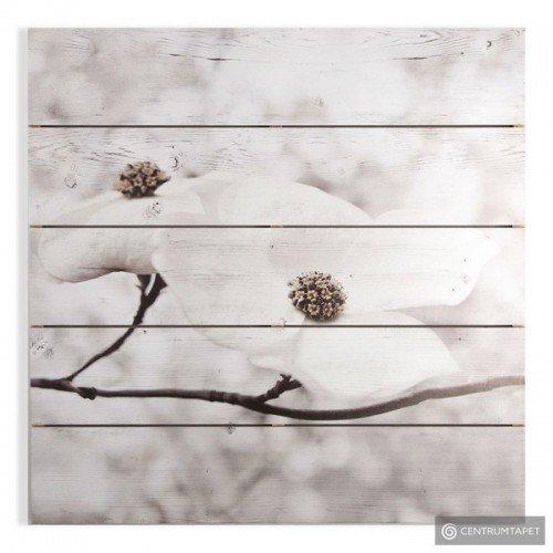 Obraz na drewnie Kwitnące...
