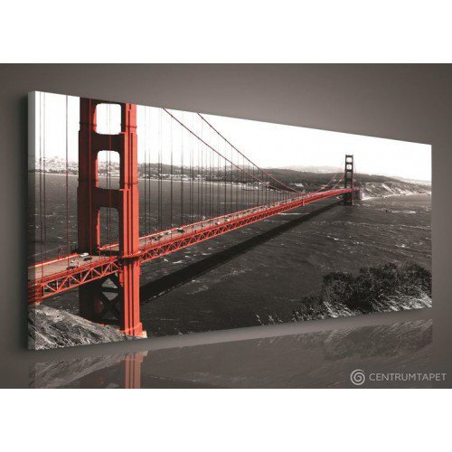 Obraz Golden Gate Bridge PP103O3