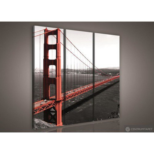 Obraz Golden Gate Bridge PS103S6