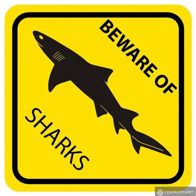 Naklejka ścienna SPN84WS Yellow Shark