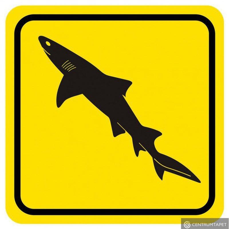 Naklejka ścienna SPN85WS Shark