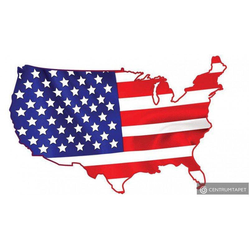 Naklejka ścienna USA SPN101WS