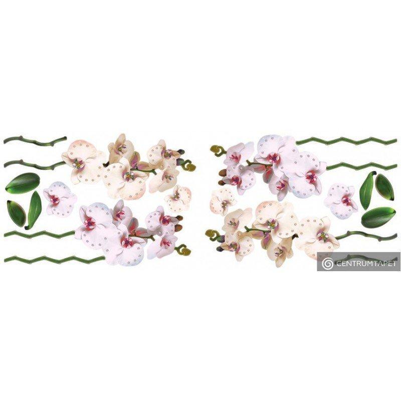 Naklejka ścienna Kwiaty SPN143WD