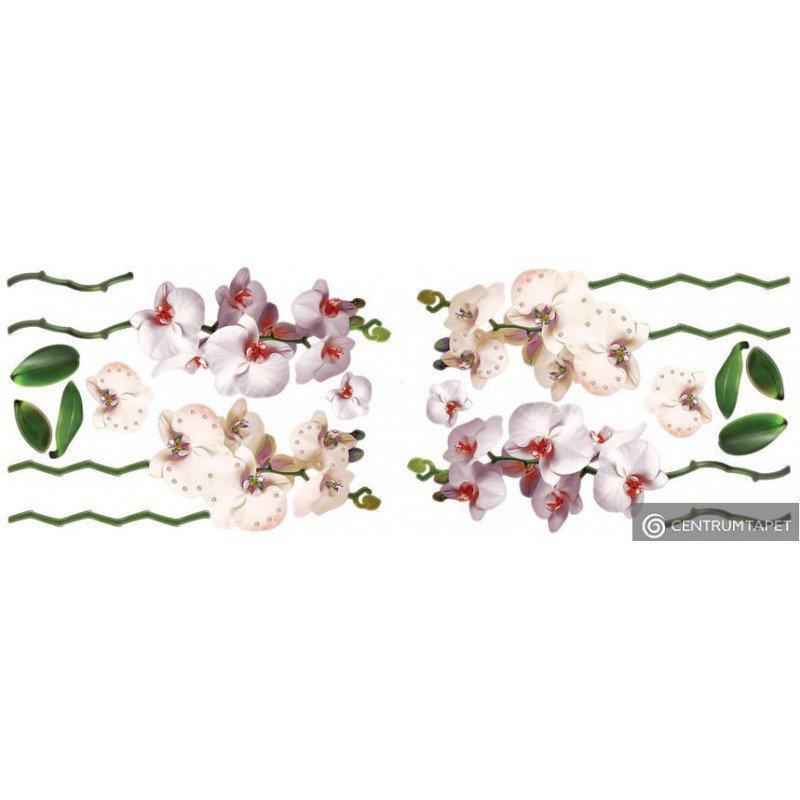 Naklejka ścienna Kwiaty SPN144WD