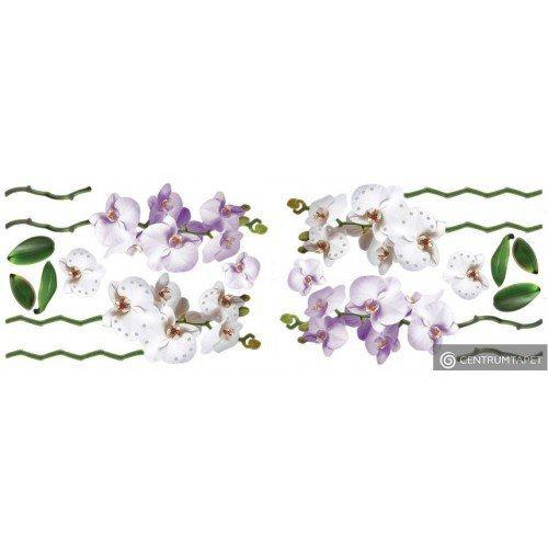 Naklejka ścienna Fioletowe Kwiaty SPN145WD
