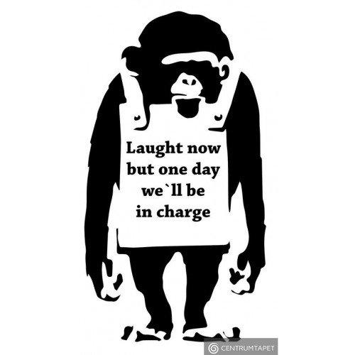 Naklejka ścienna Monkey SPN191TS
